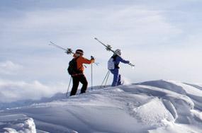 SalomonSkischuhe SkiSkimarke Salomon Salomon kaufen von clK13JuFT