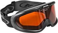 Alpina Spectravision Skibrille