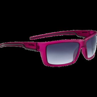 Alpina Slay Sonnenbrille Schwarz bVAqdn