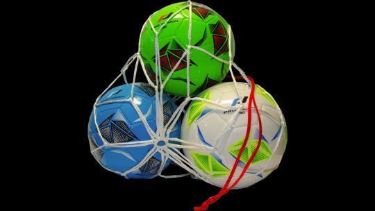 Pro Touch Balltragenetz 3-Ball 3