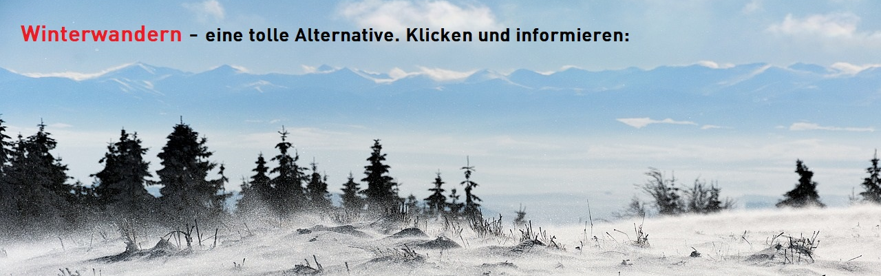 Trend Sportart Winterwandern